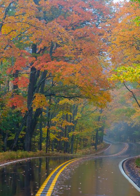 Foggy Fall Morning Winding Road