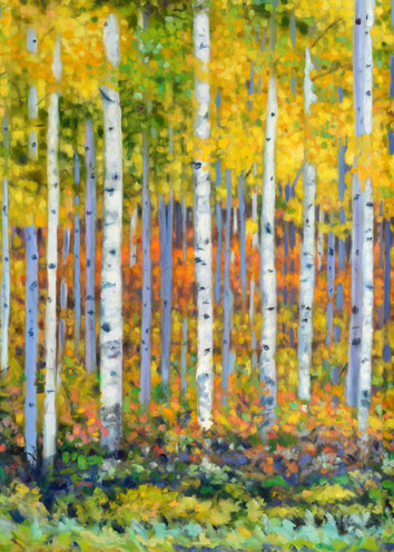 Aspens Glow Oil Painting