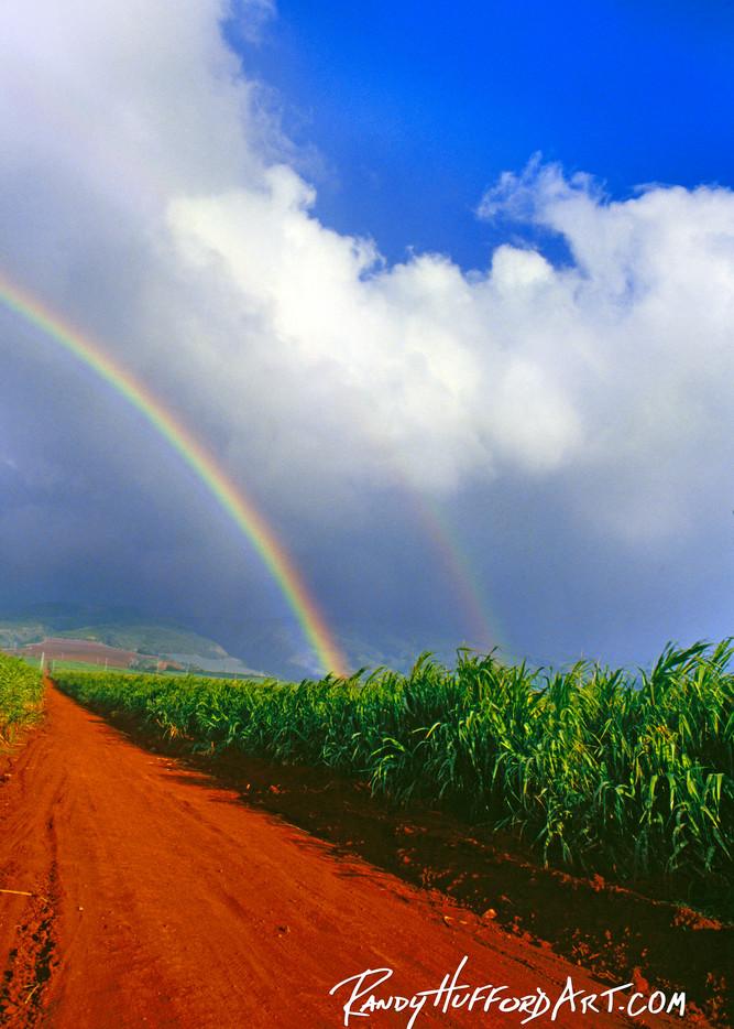 Napili Rainbow