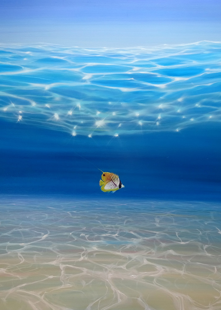 Print Of Solo In The Turquoise Sea   An Underwater Seascape With Threadfin Butterfly Fish Art | Gill Bustamante Artist