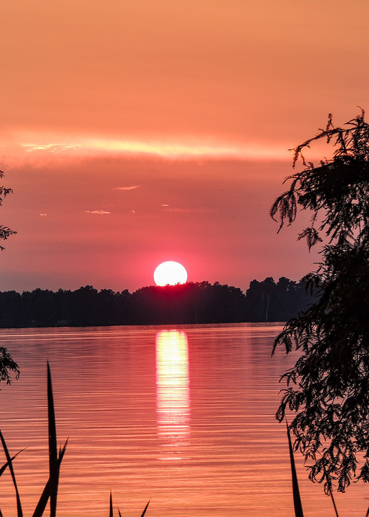 Reelfooot Lake At Sunset Photography Art | N2 the Woods Photography