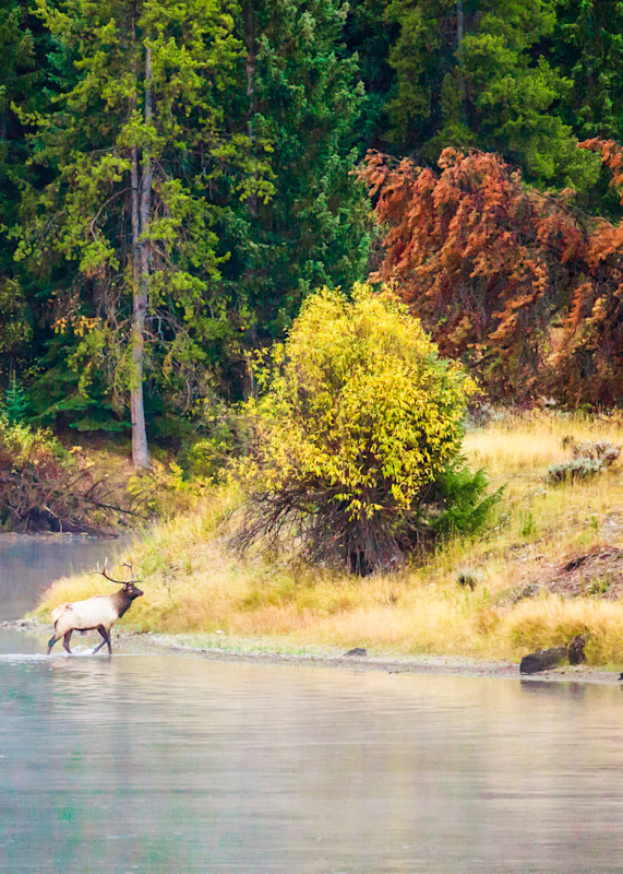 Crossing At The River Bend Photography Art   Brokk Mowrey Photography