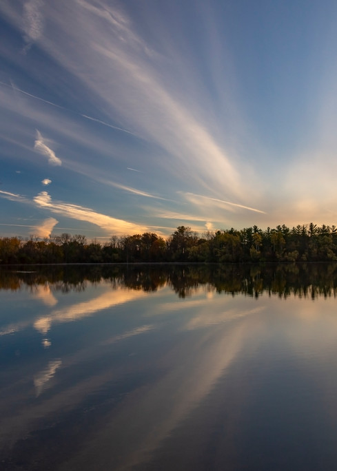 Sun, Trees And Water Photography Art | Elizabeth Stanton Photography