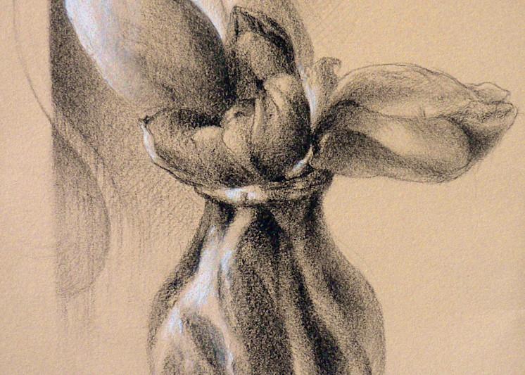 Tulips - Fine Art Print