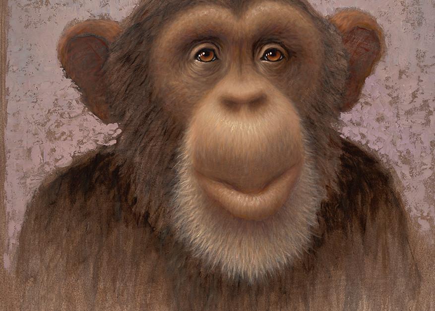 Chimp Art   Fine Art New Mexico