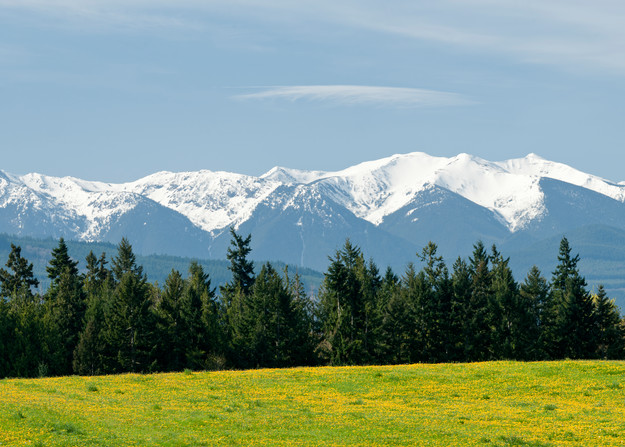 Olympic Mountain Range Pano, Sequim, Washington