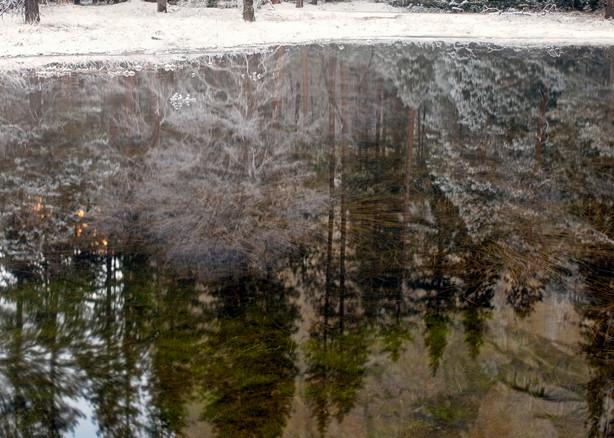 El Cap Reflection