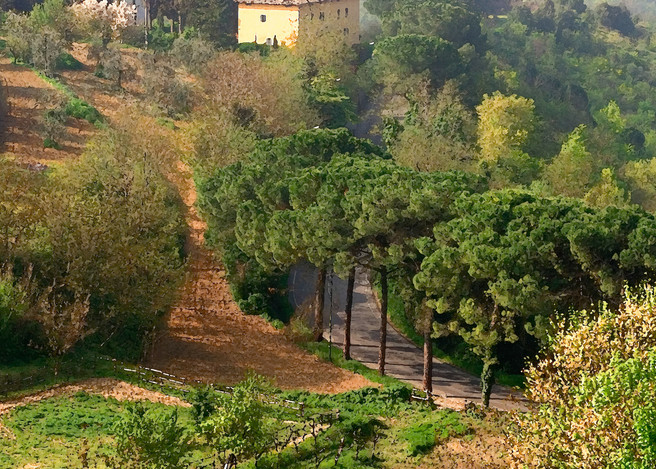 Morning Mist Tuscany
