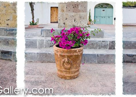 Three Pots San Miguel