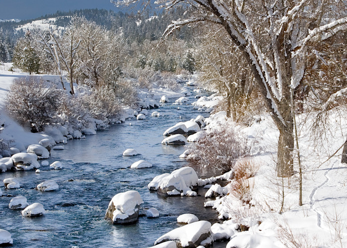 Winter Morning Truckee River