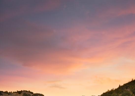 Autumn Moon Napa Valley