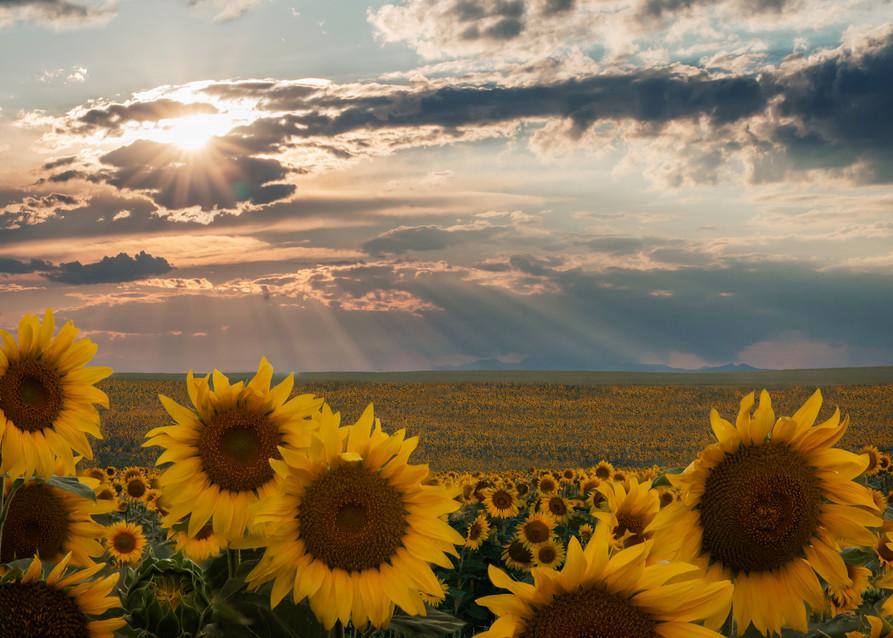Sun Shower Photography Art | Jon Blake Photography
