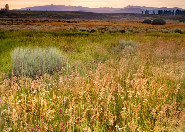 Martis Valley Photo
