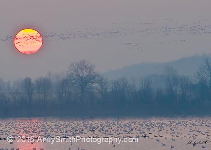 Sunrise at Middle Creek Wildlife Management Area, fine art photograph