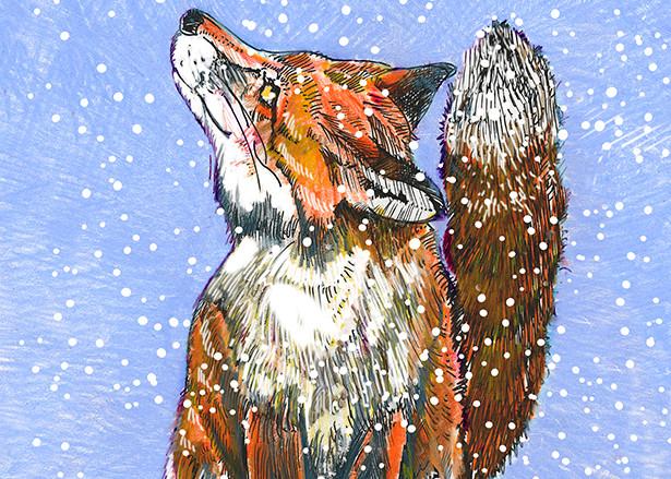 Fox Art | Fine Art New Mexico