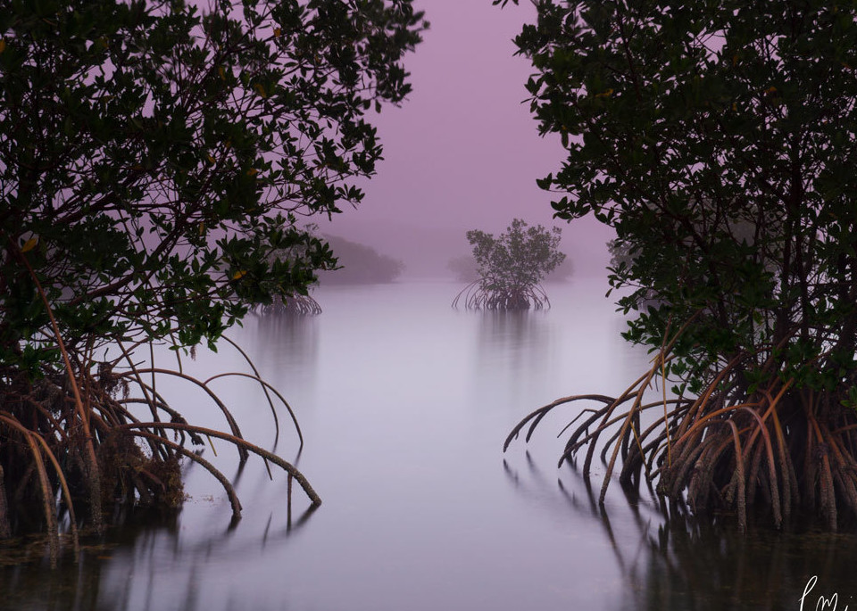 constance Mier Photography - waterscapes
