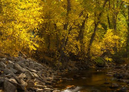 Markleville Fall Colors Photography Art | Brad Scott Visuals