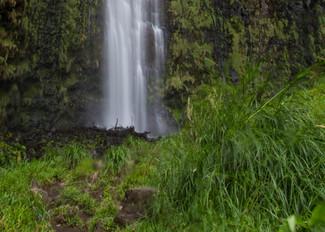 Waimoku Falls Panoramic print by Brad Scott