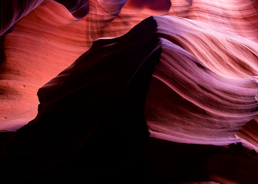 Beauty and the Beast, Arizona Desert Photo Print