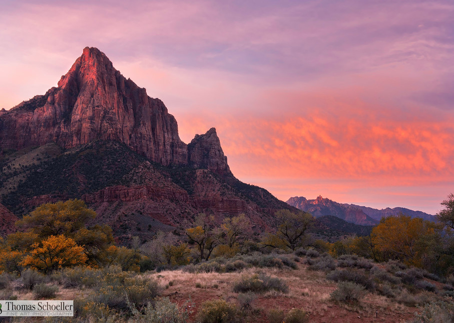 First light at the Watchman Zion National Park open edition prints/Luxury large Metallic Pearl Gallery Mount Acrylic Gloss fine art concepts