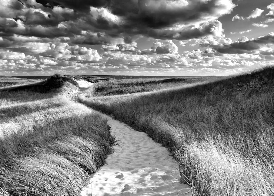 """""""Philbin Beach Path"""" Black and white Martha's Vineyard beach photograph"""