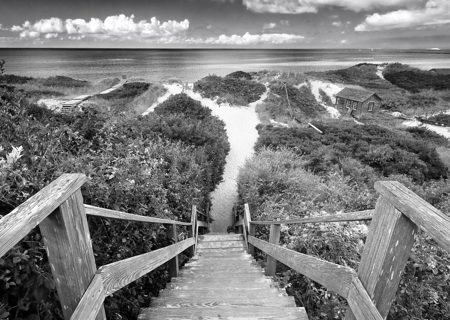 """Steps to the Beach"" Nantucket black and white ocean photography"
