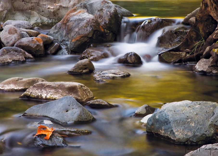 Dobbyns Creek photograph for sale as fine art by Tony Pagliaro