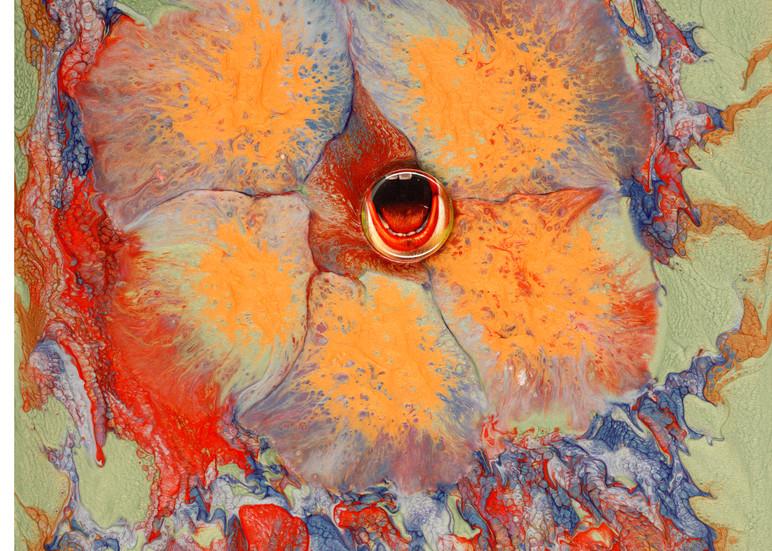Birth Abstract Original Art