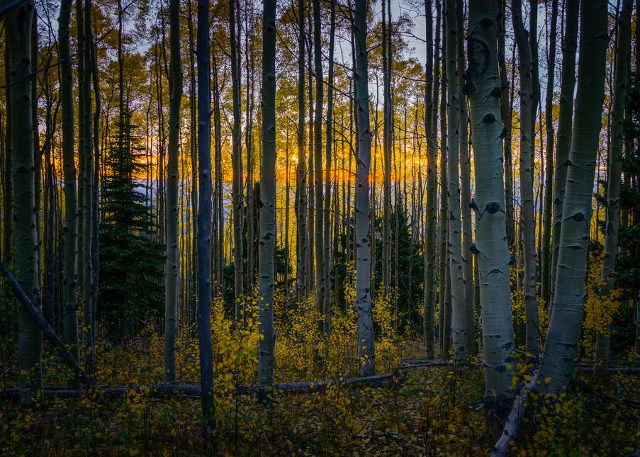Autumn, Landscape, Photography, Sangre De Christo Mountains, New Mexico, Southwest, sunset