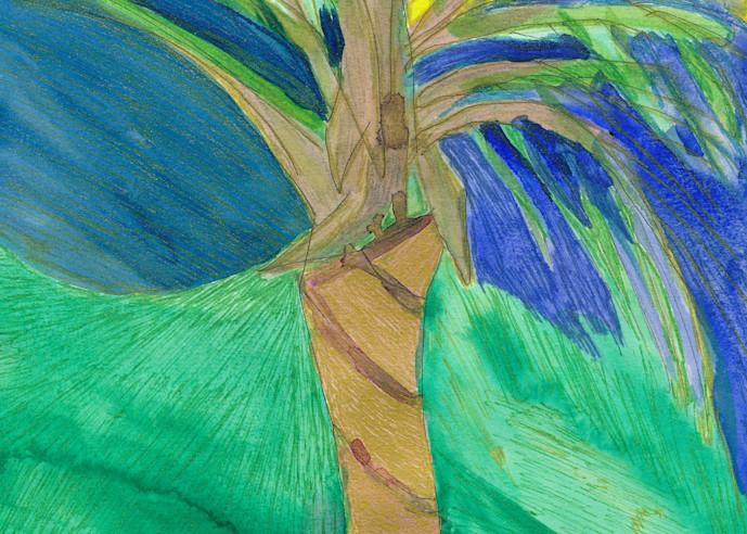 Caribbean Tree