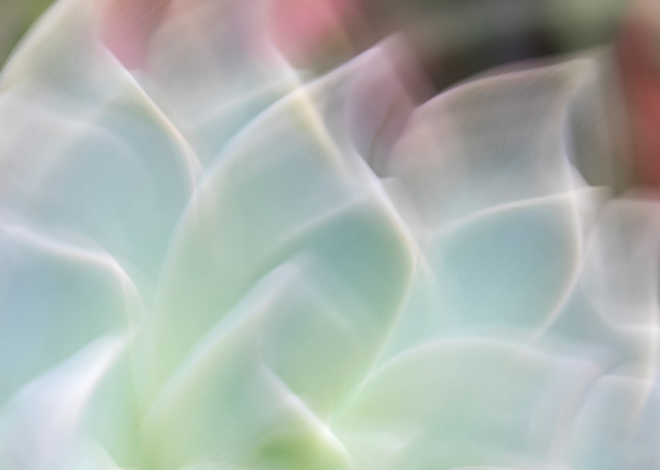 """""""World of Color #5"""" Abstract Macro Soft Blue Flower Wall Art"""