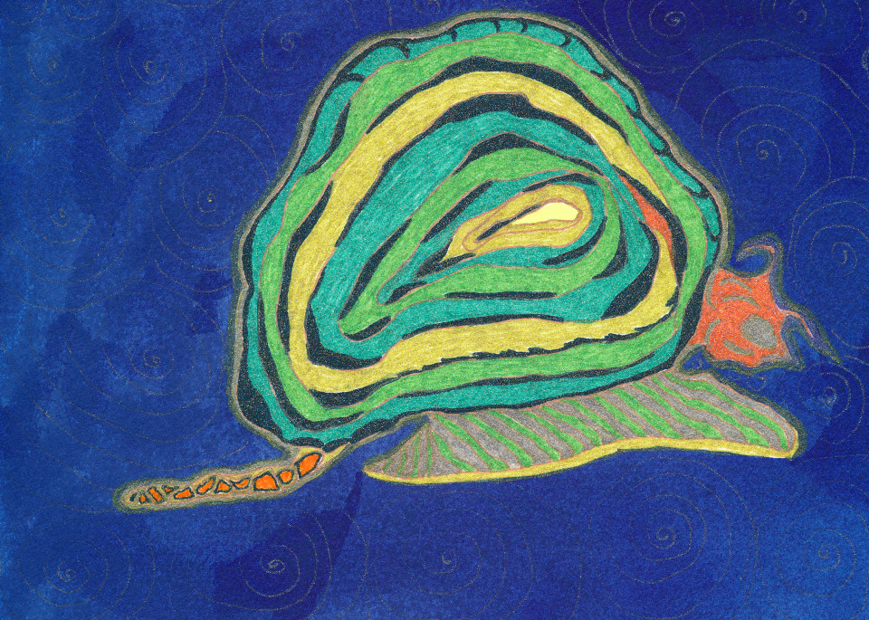 Snail Art   Pam White Art