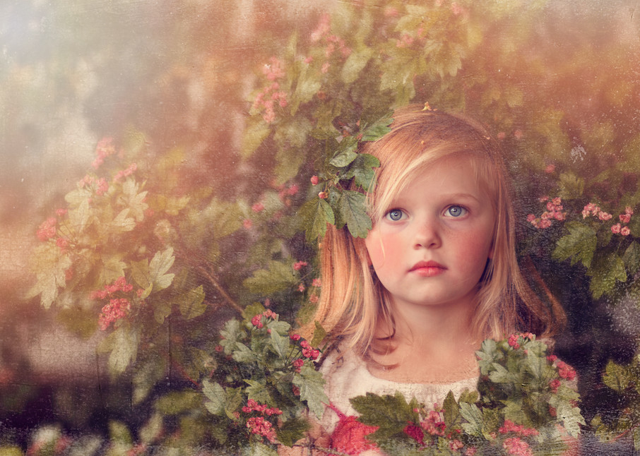 Hidden In The Hawthorne Art | Mandy Jane Williams Art