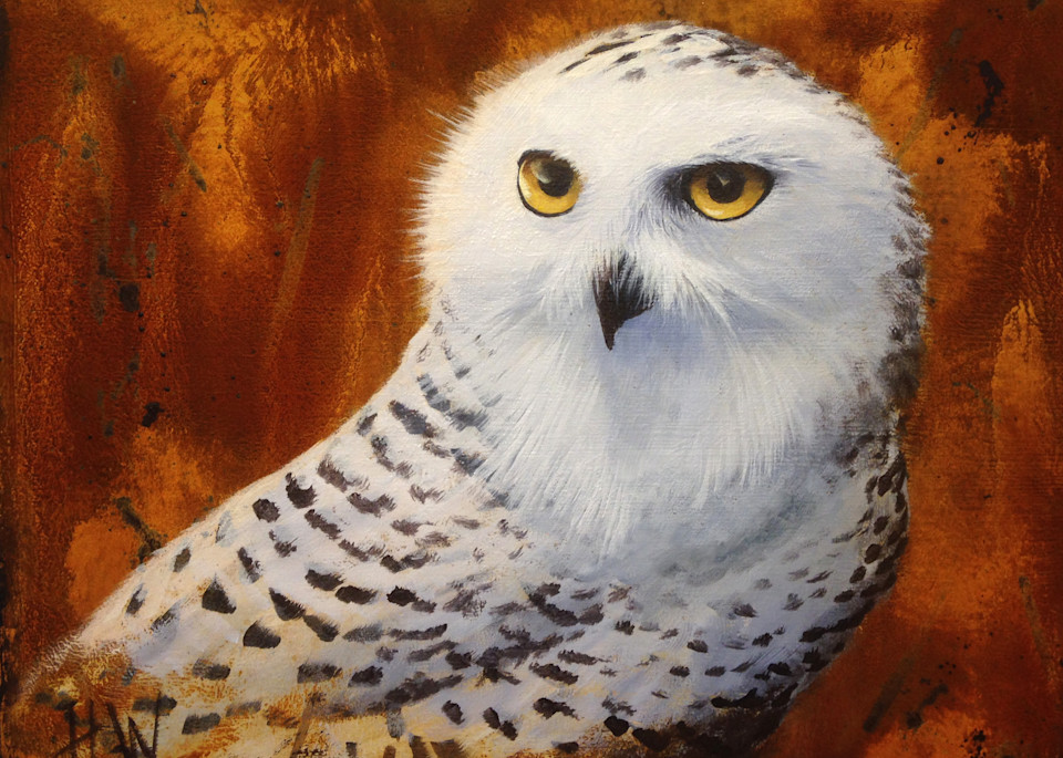 Snowy owl painting for sale
