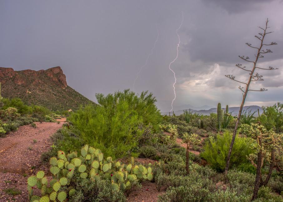 Little Cat Mt Monsoon Lightning