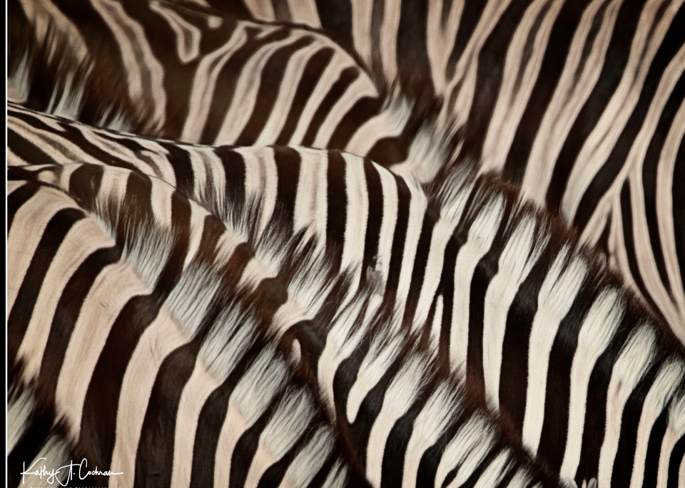 Lonely Stripes Photography Art | Images2Impact