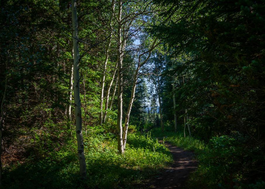 Colorado, Landscape, Photography, Conundrum Trail, Summer, Rocky Mountains, Aspen Snowmass Wilderness