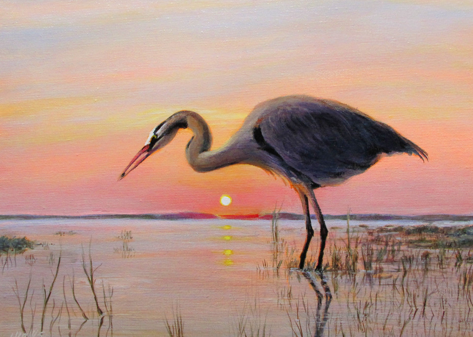 Great Blue Heron At Dawn Art   Charles Wallis