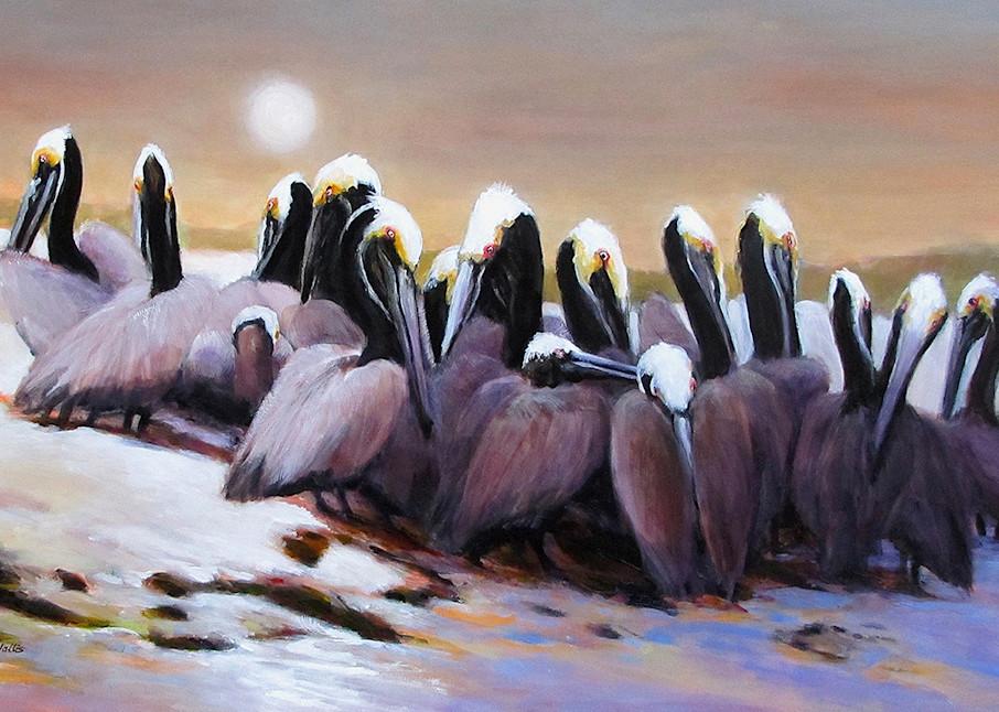 Brown Pelicans On Shamrock Island Refuge Art   Charles Wallis