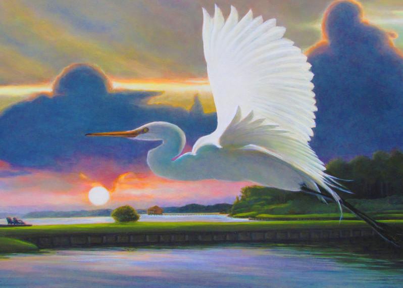 Great White Egret Sunrise A Art | Charles Wallis