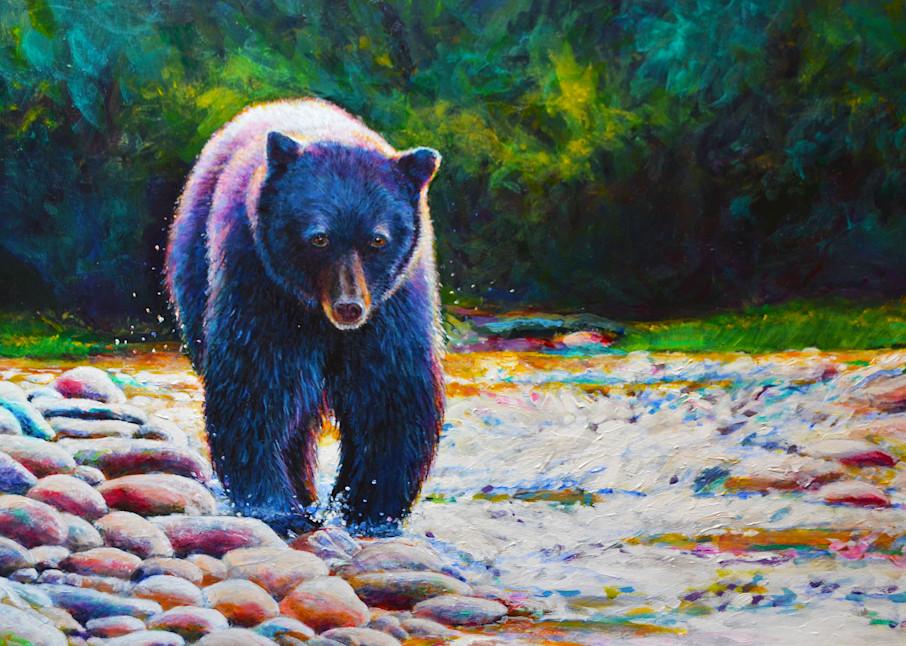 Black Bear On The Prowl.300.12x18 Art | Charles Wallis