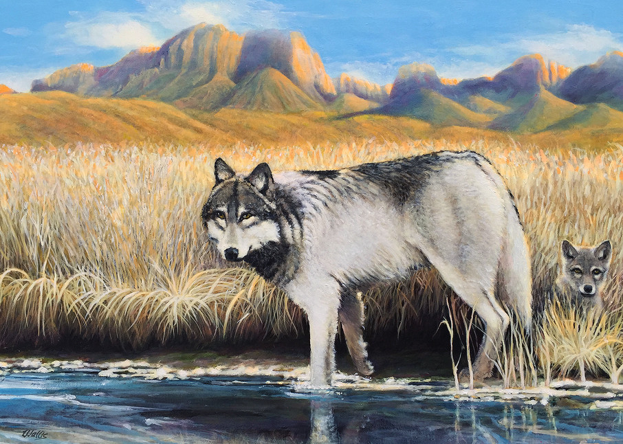She Wolf And Cub 24 X36 Art   Charles Wallis