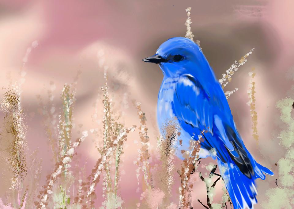 Bluebird Art   Dave Fox Studios
