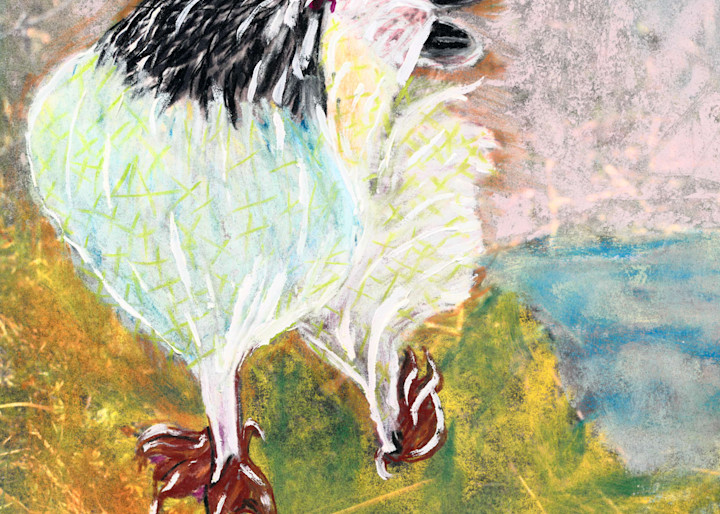 Rollicking Chicken Art | Pam White Art