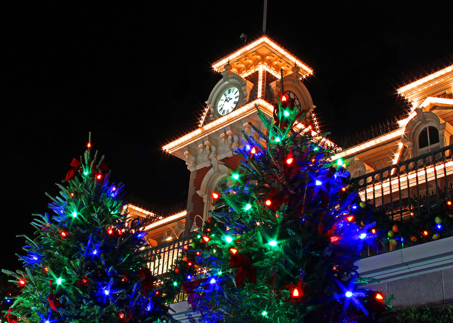 Magic Kingdom Christmas Trees - Disney Christmas Photos