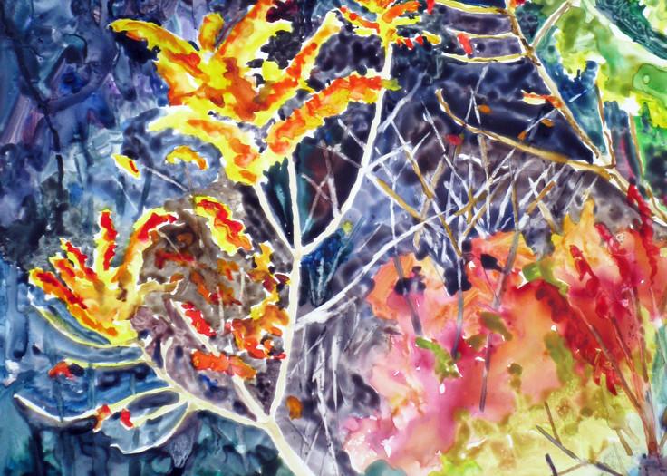 Autumn Wildflowers Art | David Beale