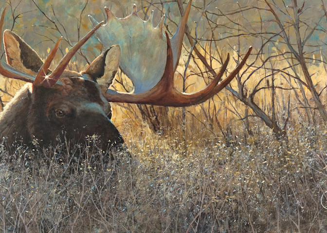 Moose Art | Pete Maupin