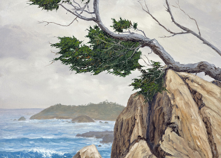 Cypress On The Rocks Art | Cypress Cove Creations