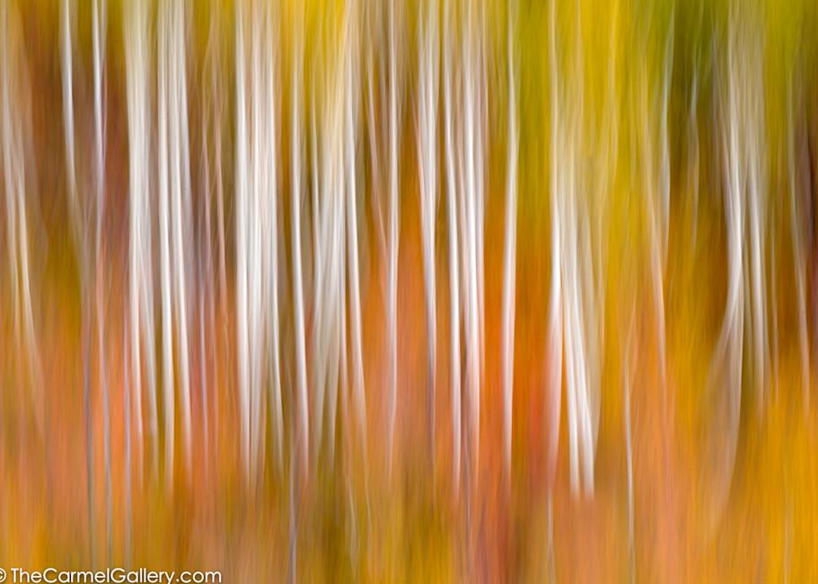 Autumn's Essence Art   The Carmel Gallery