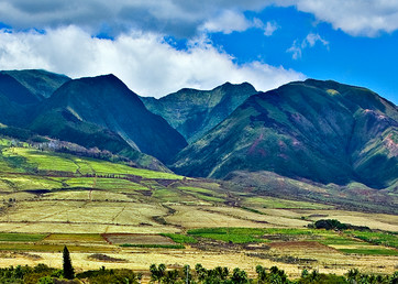 Front Street West Maui Mountains Pano